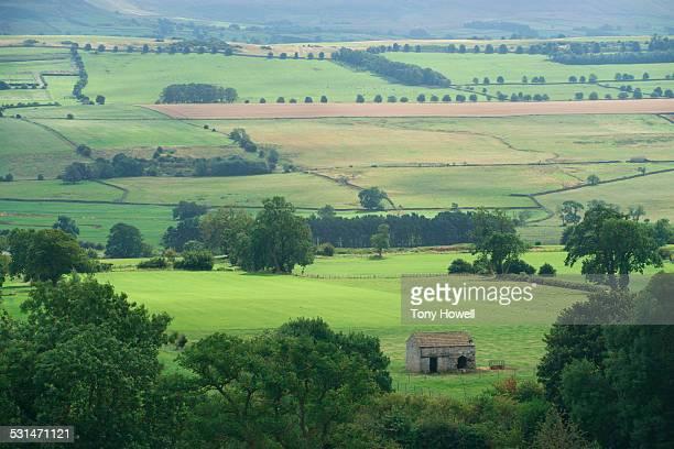 View over Wensleydale