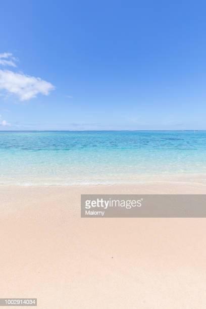 view over white sand beach with clear turquoise sea in the background. le morne, rivière noire, mauritius. - islas mauricio fotografías e imágenes de stock