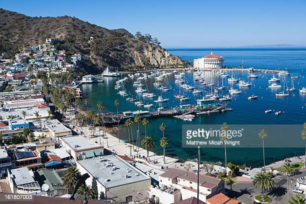 A view overlooking the Avalon Harbor of Catalina