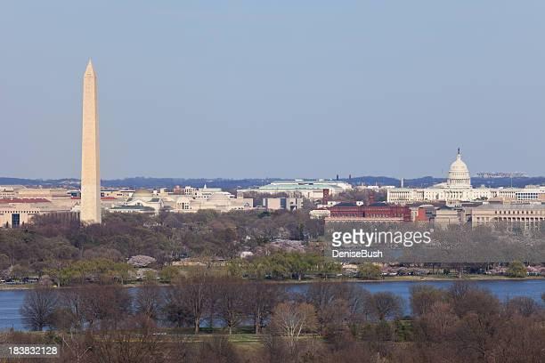 DC View