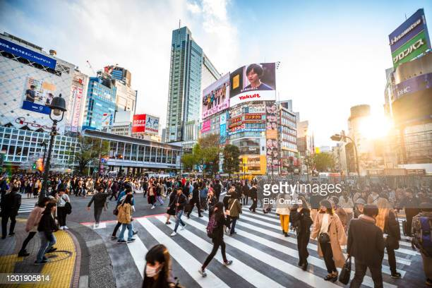 view shibuya crossing at sunset tokyo 2020 japan - japan stock pictures, royalty-free photos & images