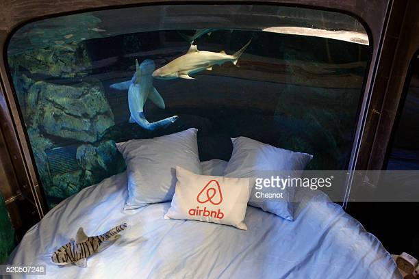 A view shows an underwater room structure installed by the Airbnb accommodation site in the Aquarium of Paris on April 11 2016 in Paris France Airbnb...