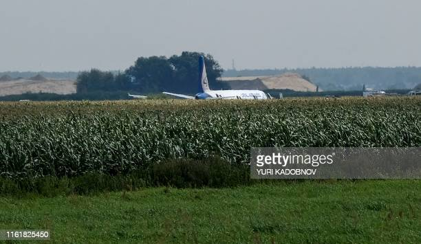 View shows the Ural Airlines A321 plane after a hard landing on a corn field near Moscow's Zhukovsky airport on August 15, 2019. - A Russian pilot...