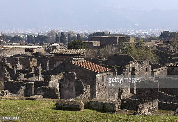 A view taken on March 18 2014 shows the House of Neptune in the Modesto way where a custodian doing rounds last week discovered that 'a part of a...