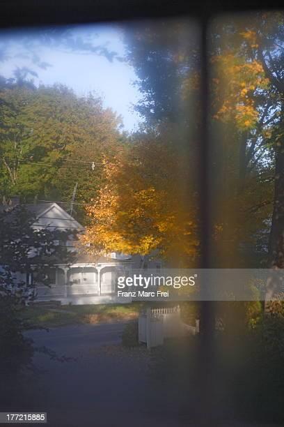 View through a blind window in autumn