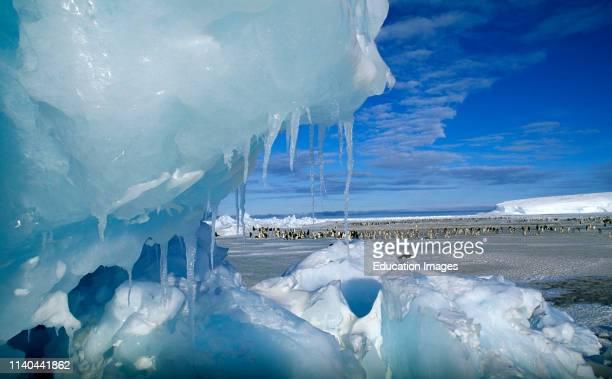 View through an icy pressure ridge of Emperor Penguin colony Weddell Sea Dawson Lambton Glacier
