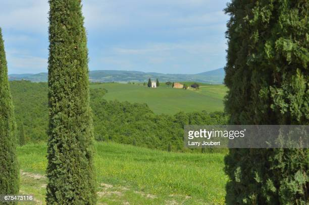 view through detail of cypress trees with a small bell tower in between - capella di vitaleta stock pictures, royalty-free photos & images