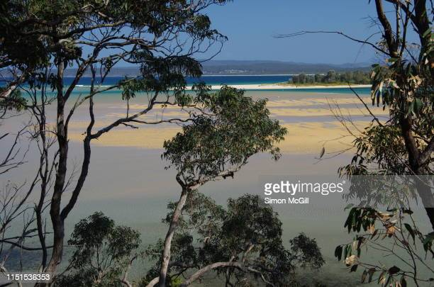 view through trees to the entrance to boggy creek from merimbula bay seen at low tide from djirringanj walking track, merimbula, new south wales, australia - merimbula stock pictures, royalty-free photos & images
