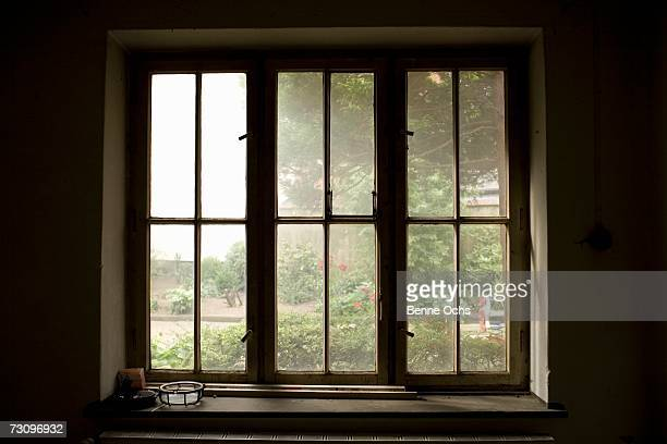 view through window onto garden - window sill stock pictures, royalty-free photos & images