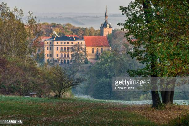 view to ettersburg castle - thuringia stock pictures, royalty-free photos & images
