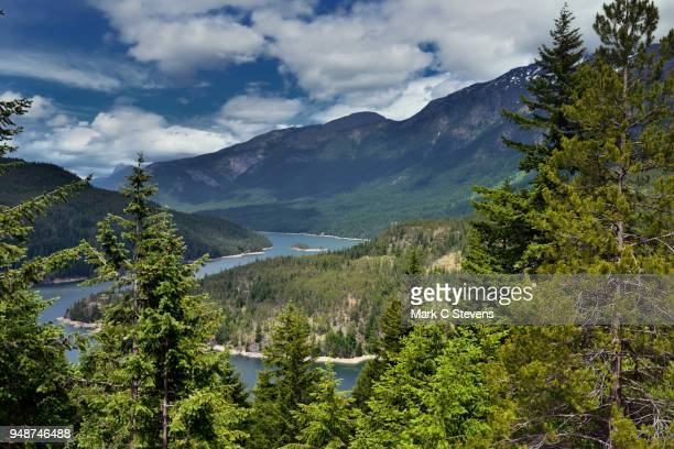 a view to ross lake and mountains beyond - ross lake stock photos and pictures
