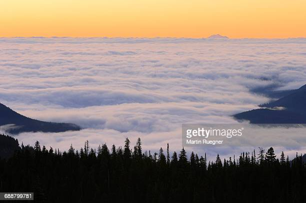 View to sea of clouds at warm morning light.