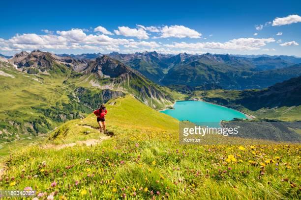 オーストリアのアルプス山脈の眺め - フォアアールベルク州 ストックフォトと画像