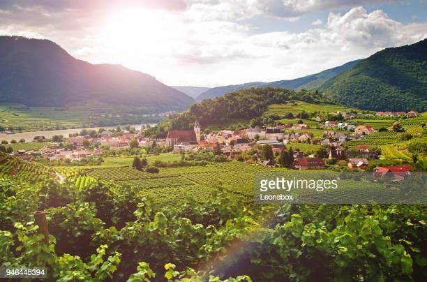 """blick auf die berühmte stadt """"spitz an der donau"""" - wachau - österreich - unesco stock-fotos und bilder"""