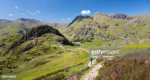 view to the langdale pikes from lingmoor fell, great langdale, lake district national park, cumbria, england, uk - extreme terrain stock pictures, royalty-free photos & images
