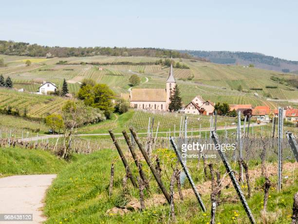 View to the village of Nothalten. Images taken in the Alsace Region of France between Chatenois and Andlau