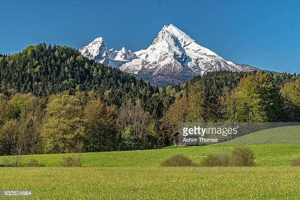 View to Watzmann Mountain - Bavaria - Germany