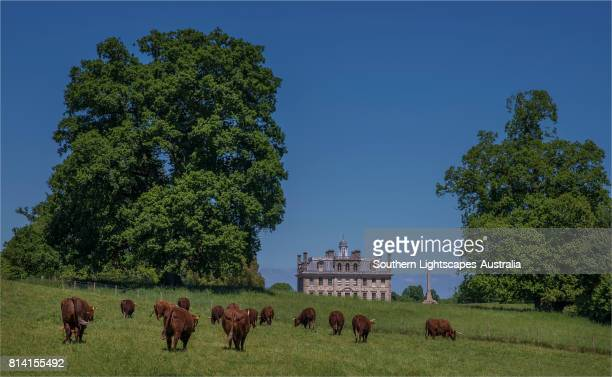 A view towards Kingston Lacey, rural Dorset, England, United Kingdom