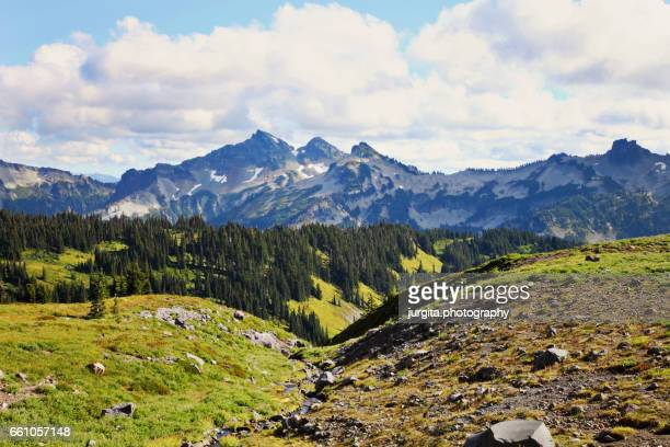 View while hiking Mt. Rainier, Paradise