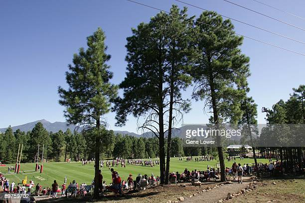 A view with the tall pine trees as the Arizona Cardinals run through drills during training camp on August 7 2009 in Flagstaff Arizona