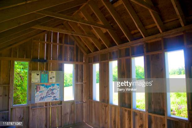 viewing blind, litchfield, ct - barry wood stock pictures, royalty-free photos & images