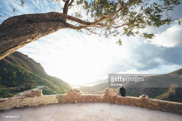 木の下の視点 - ムルシア市 ストックフォトと画像
