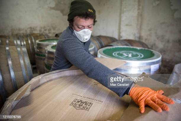 Views in the barrel room of the vineyard of Federico Perdisa on March 28 2020 in Maggio Bologna Italy Federico Perdisa is a wine producer of a little...