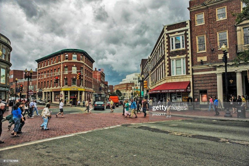 Views of Cambridge Massachusetts : Stock Photo