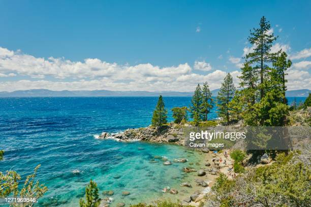views of lake tahoe in the summertime in northern california. - サウスレイクタホ ストックフォトと画像