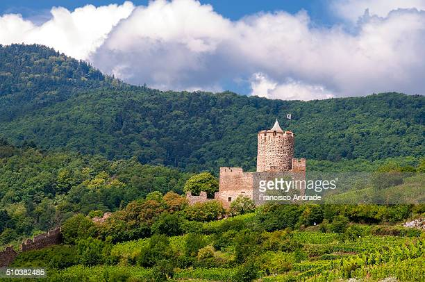 Views of the castle and the vineyards of the village of Kaysersberg.