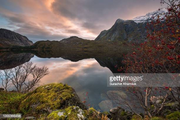 views of the fjords with reflections in the water. - monongahela national forest stock photos and pictures