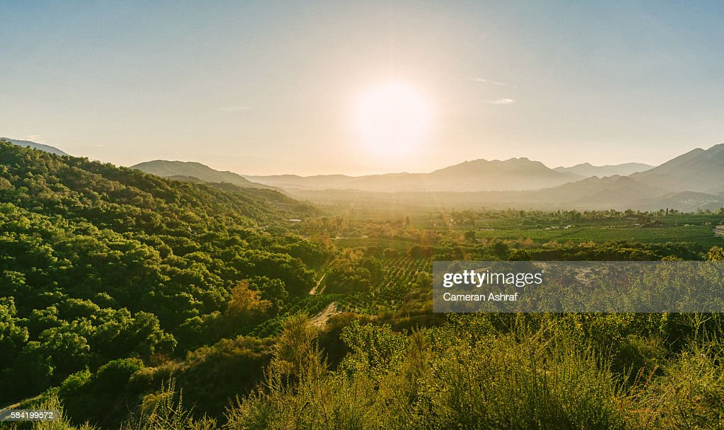 Views of the Ojai Valley and Citrus Trees from Ojai, California : Stock Photo