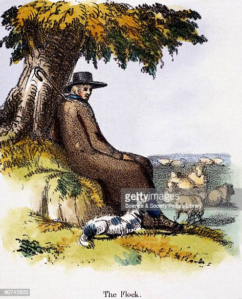Vignette from a lithographic plate showing a shepherd watching his flock Taken from 'The Sheep' in 'Graphic Illustrations of Animals Showing Their...
