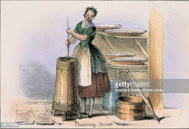 Vignette from a lithographic plate showing a woman churning butter in a dairy Taken from 'The Bull Cow and Calf' in 'Graphic Illustrations of Animals...