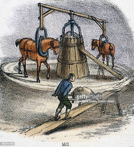 Vignette from a lithographic plate showing the preparation of clay in a pugmill operated by horses to make bricks or pottery Taken from 'The Horse'...