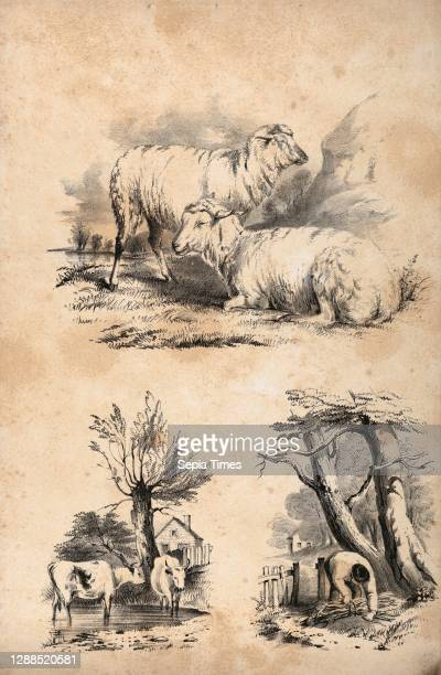 Vignette with two sheep, Vignette with two cows in a pool, and Vignette of a wood-gatherer, in: The New York Drawing Book, Containing a Series of...