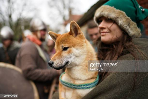 Viking reenactor stands with her dog as she waits to march through York during a living history display as part of the 36th York Viking Festival on...