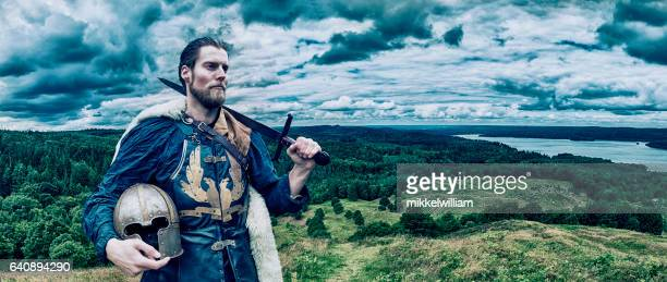 viking warrior stands on hill overlooking the landscape - warrior person stock photos and pictures