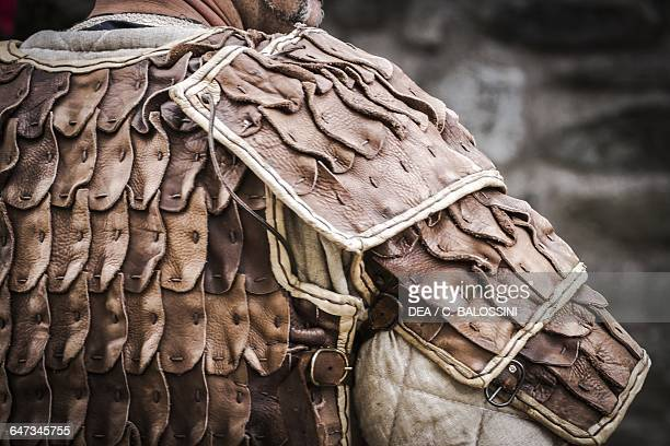 Viking warrior with brigantina back plate and gambeson Scandinavia 10th century Historical reenactment