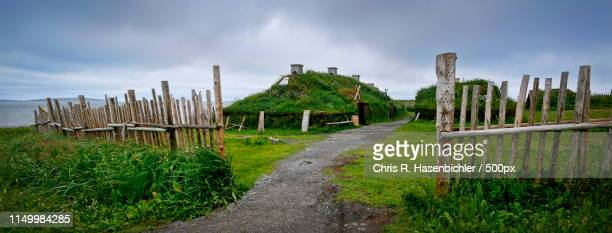 vikings! - longhouse stock photos and pictures