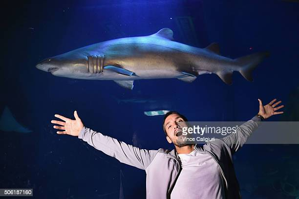 Viktor Troicki of Serbia poses with the sharks at the Melbourne Aquarium during day five of the 2016 Australian Open at Melbourne Park on January 22...