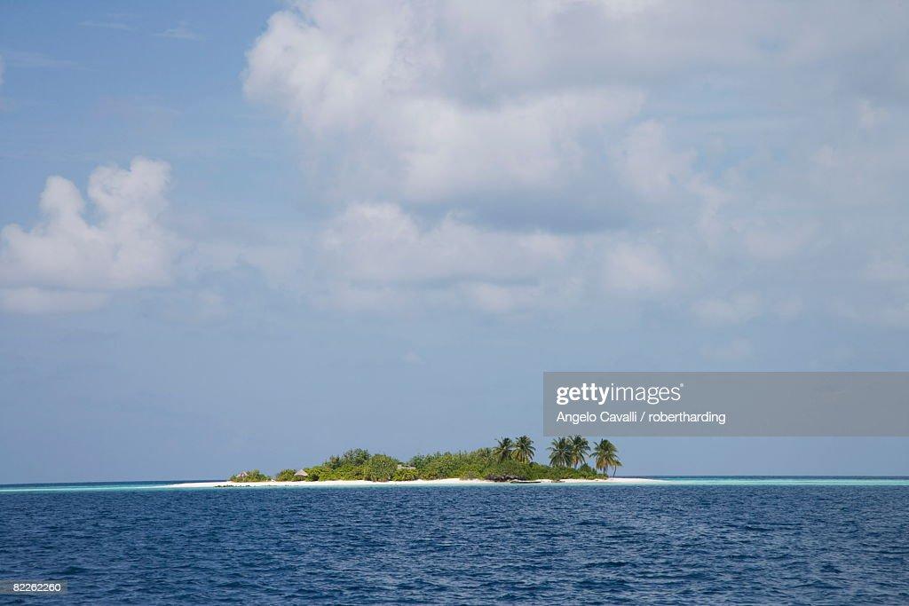 Vilamendhoo Island, Ari Atoll, Maldives, Indian Ocean, Asia : Stock Photo