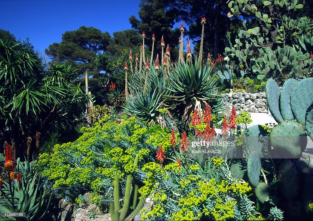Villa Ephrussi de Rotschild's gardens in St Jean Cap Ferrat, Alpes Maritimes France On March 05, 2004- : News Photo