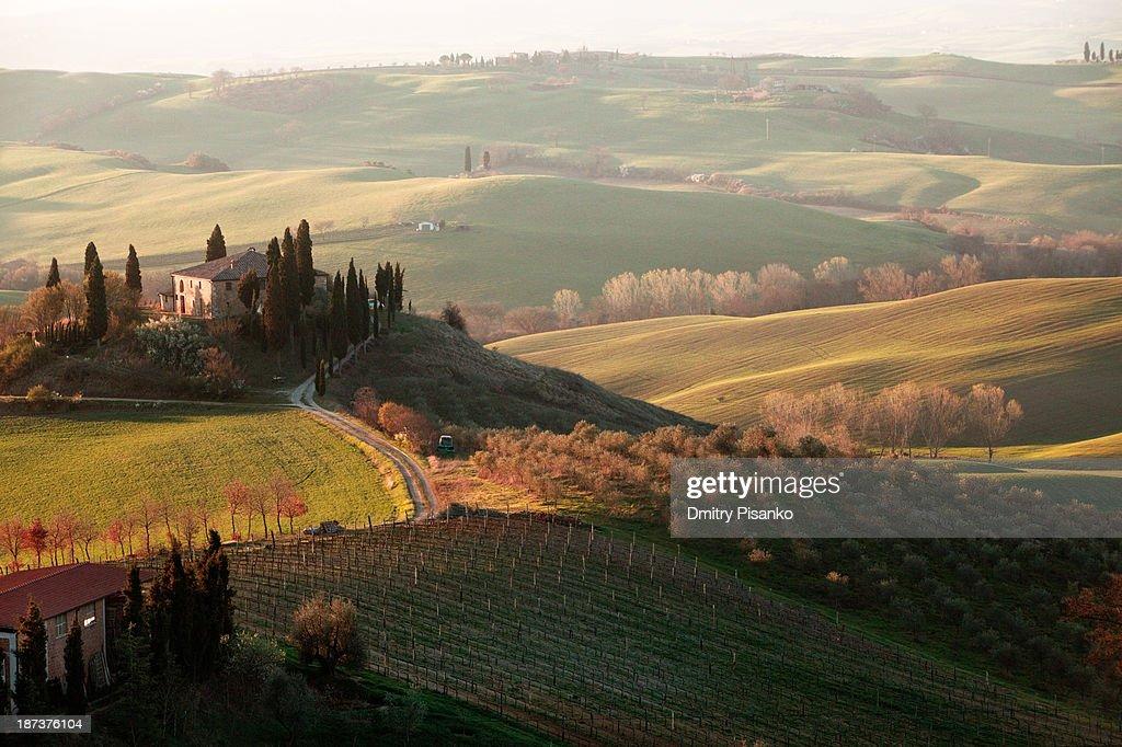 Villa in Tuscany : Stock Photo