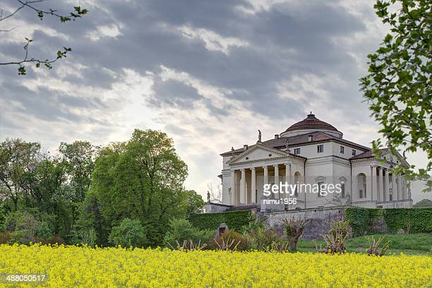 "villa ""la rotonda"" sorrounded by yellow rapeseed flowers. vicenza-italy. - neoklassiek stockfoto's en -beelden"