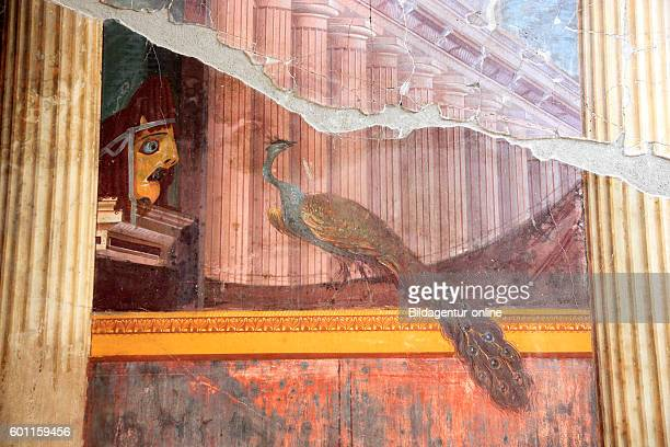 Villa of Poppea tragic mask and peacock remains of frescoes jewelry Historic City Oplontis Torre Annunziata Campania Italy
