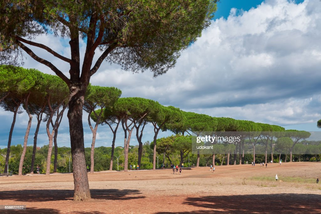 Villa Panphilj, ein schöner Park in Rom Italien : Stock-Foto