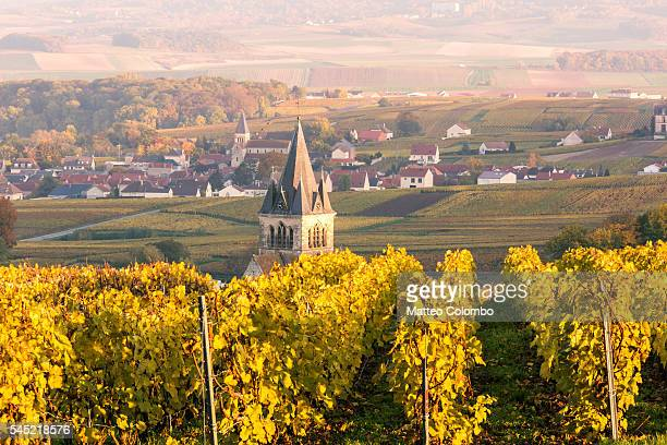 Village and vineyards in autumn, Champagne, France