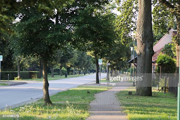 village at sunrise - land brandenburg stock-fotos und bilder