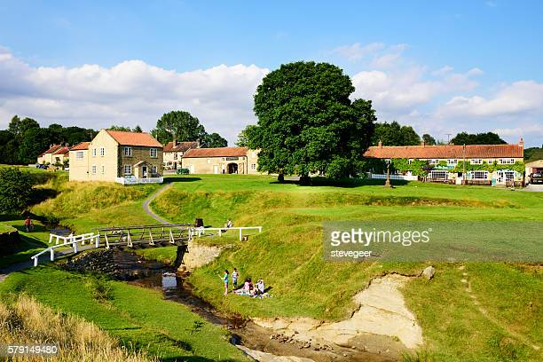 Village Green and stream, Hutton-le-Hole, England